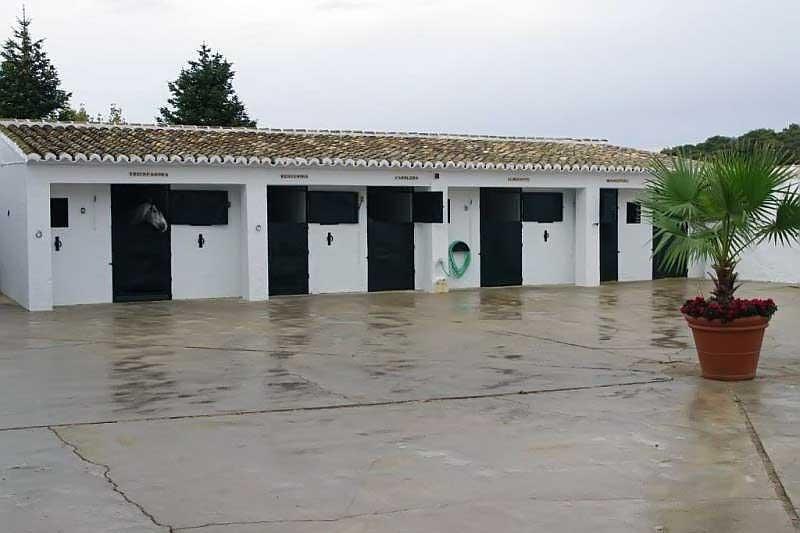 Prodazha fermy v Ispanii v Antekera provintsiya Malaga - N2160 - vikmar-realty.ru