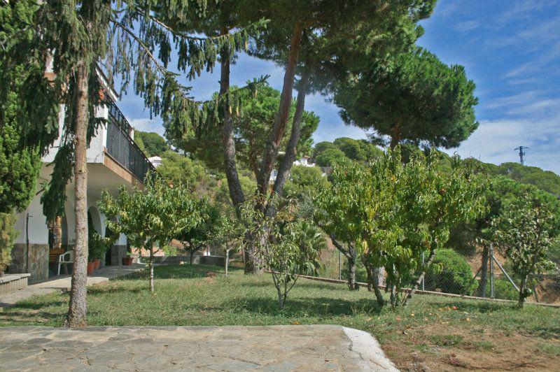 Nedvizhimost Ispanii, prodazha nedvizhimosti villa, Kosta-Brava, Lloret de Mar - N2495 - vikmar-realty.ru