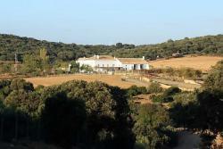 Продажа фермы в Испании в Антекера провинция Малага - №2160
